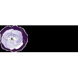 Violet delux